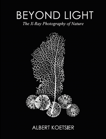 Beyond Light : The X-Ray Photography of Nature