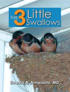 the-3-little-swallows-front